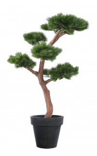 BONSAI artificiel PIN 150 cm