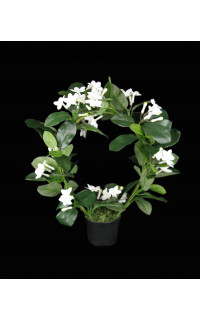 STEPHANOTIS artificiel en pot 43 cm