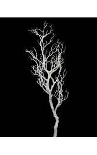 BRANCHE de bois blanc artificielle 66 cm