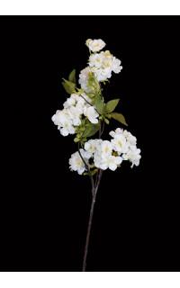 Branche de CERISIER 55 cm
