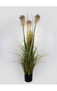 Herbe de PAMPA artificielle 120 cm