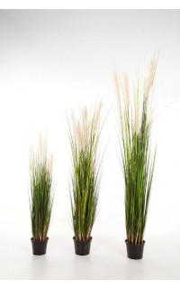 GRANDES HERBES artificielles plumeau blanc 120 à 180 cm