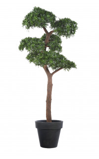 BONSAI artificiel PODOCARPUS 220 cm