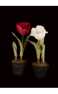TULIPE artificielle en pot 26 cm