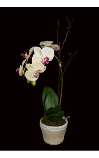 composition Phalaenopsis ORCHIDEE artificielle EN POT terre cuite 60 cm
