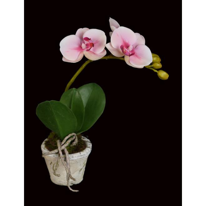 composition Phalaenopsis ORCHIDEE artificielle EN POT TC 28 cm