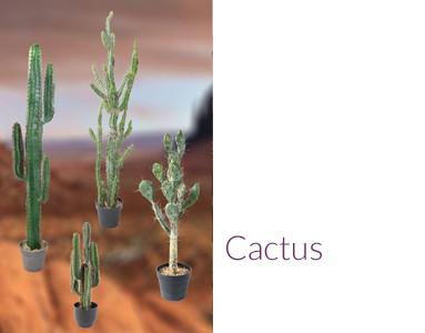 Plantes Artificielles Arbres Synthétiques Fleurs Et Végétaux