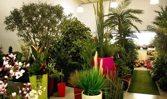 Showroom plantes et arbres artificiels